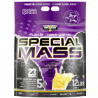 Special Mass Gainer 2.7 кг